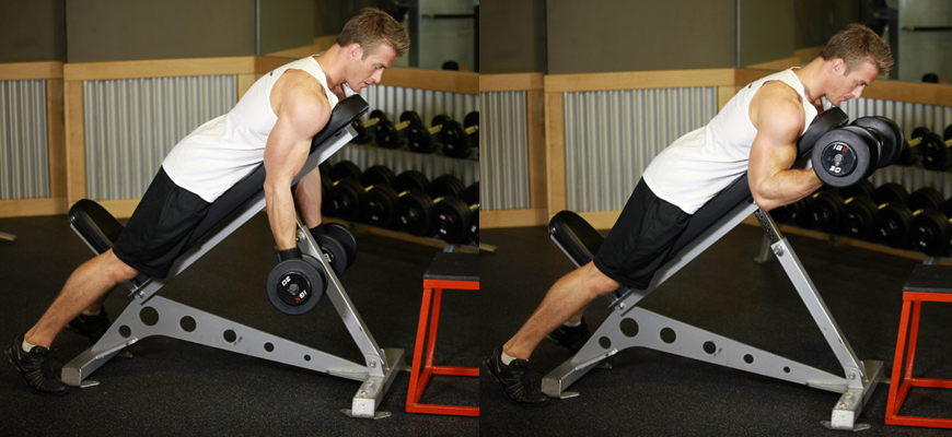 Dumbbell-Prone-Incline-Curl