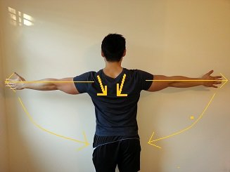 correct shoulder position