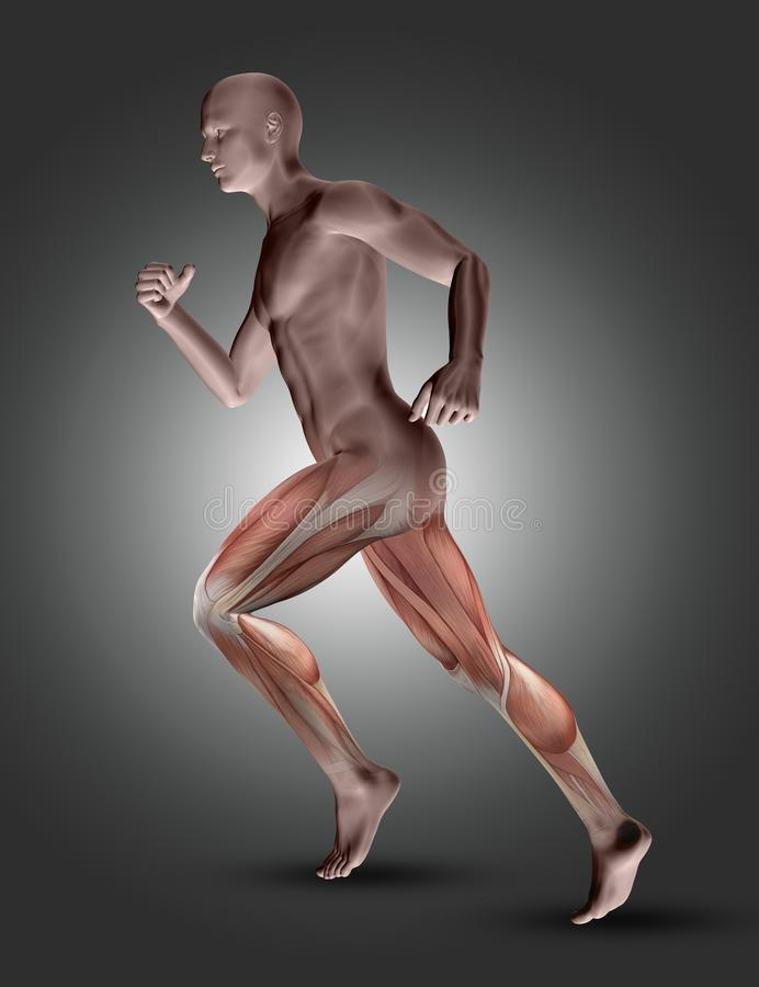 3D male figure in running pose with leg muscles highlighted stock illustration