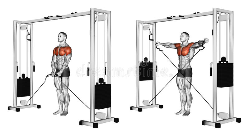 Exercising. Crossing arms to block simulator standing royalty free illustration