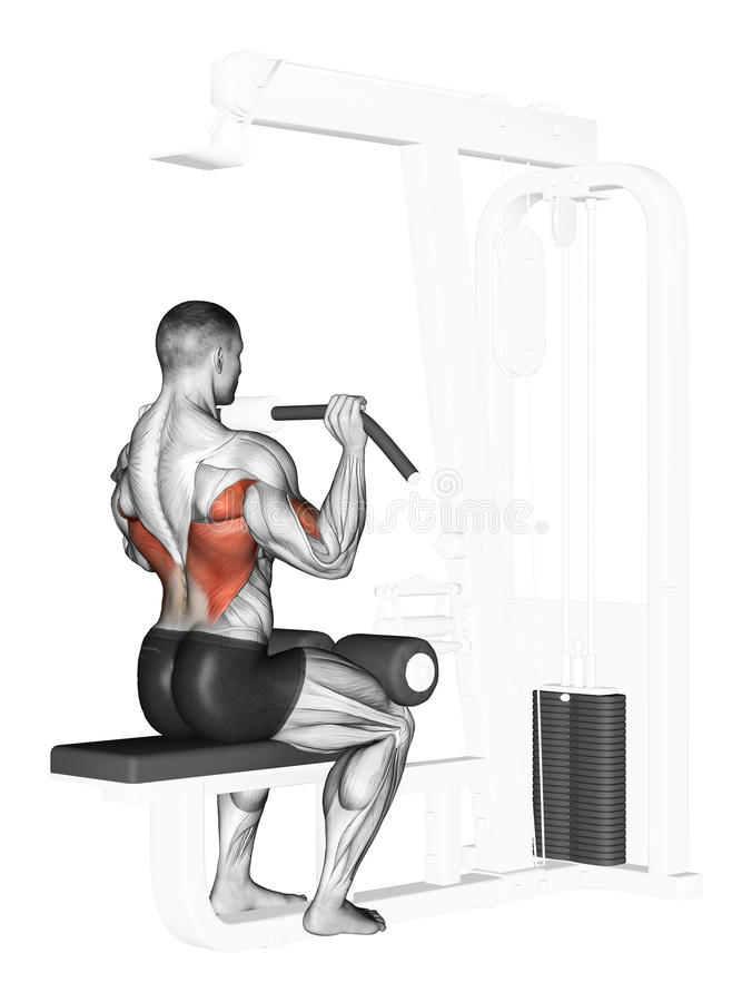 Exercising. End of the upper block in front of him. End of the upper block in front of him. Exercising for bodybuilding Target muscles are marked in red stock illustration