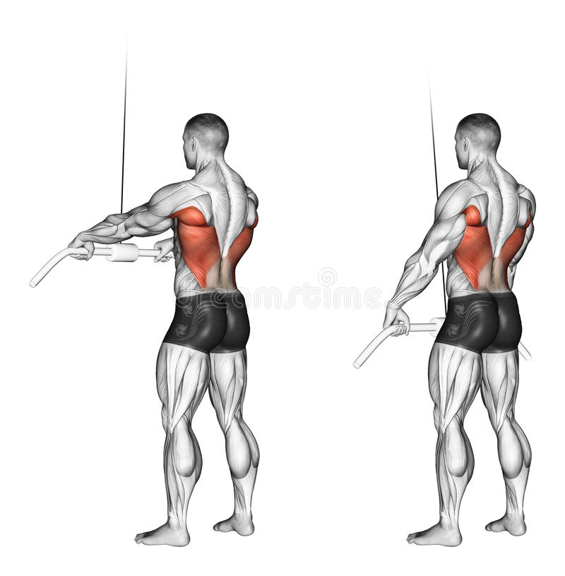 Exercising. End of the upper block straight arms royalty free illustration