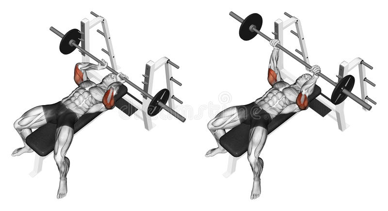 Exercising. Extension barbell lying stock illustration