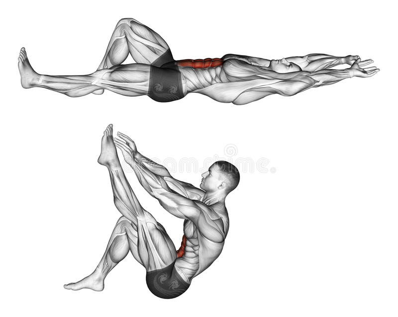 Exercising. Flexion of the trunk with the legs pulling up the leg stock illustration
