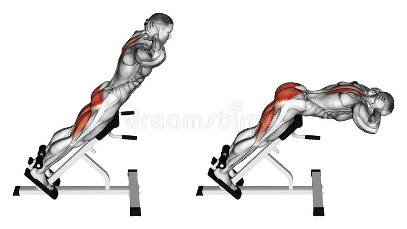 Exercising. Hyperextension royalty free illustration