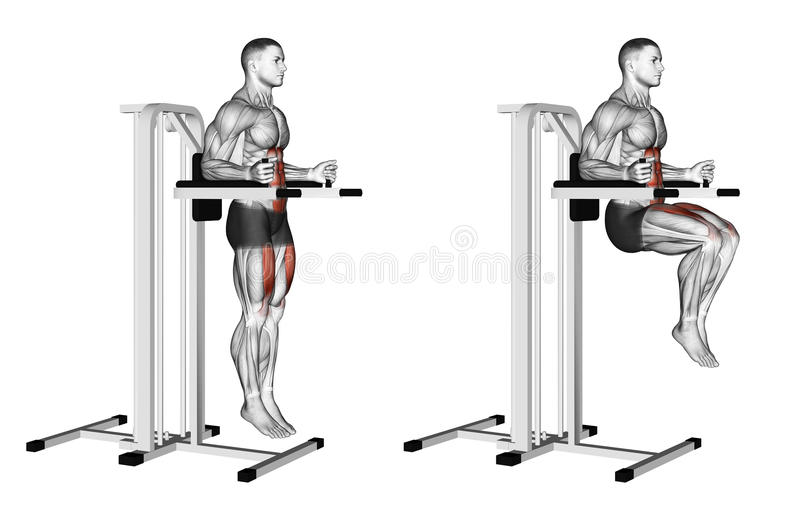 Exercising. Knee Raise on parallel bars royalty free illustration