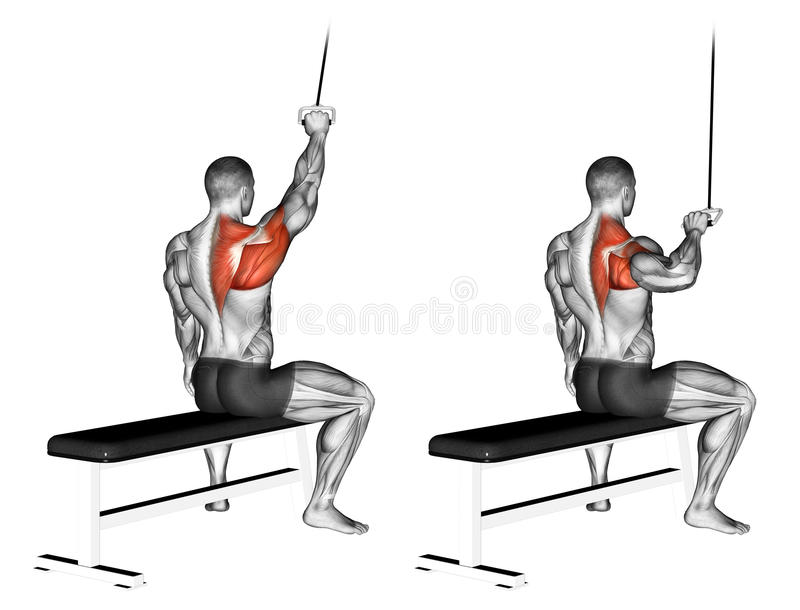 Exercising. One handed lat pulldown. One handed lat pulldown. Exercising for bodybuilding Target muscles are marked in red vector illustration