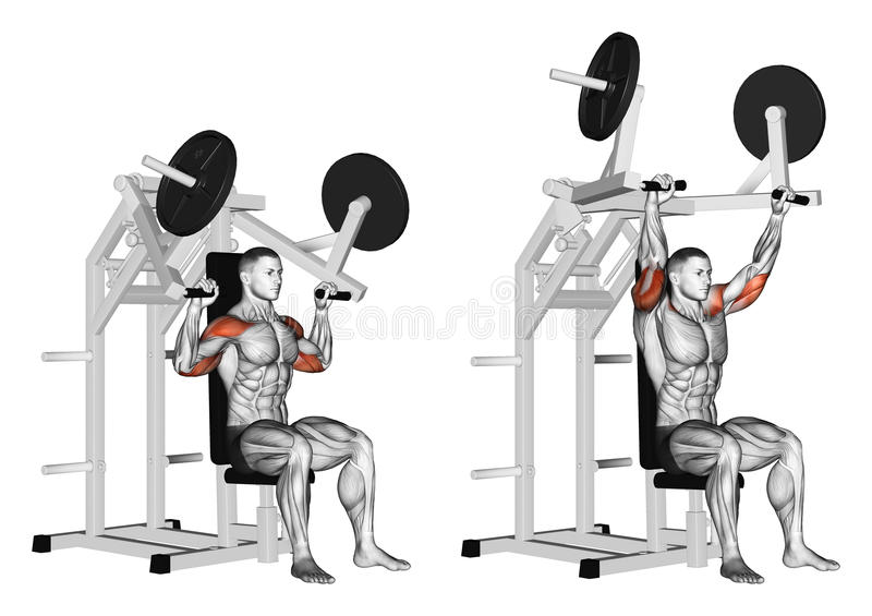 Exercising. Pull hammer on deltoids stock illustration