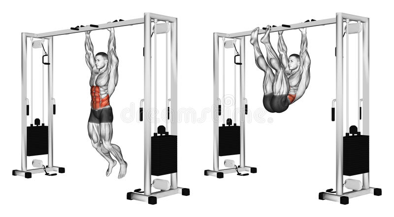Exercising. Pulling the legs to the arms hanging on the crossbar stock illustration
