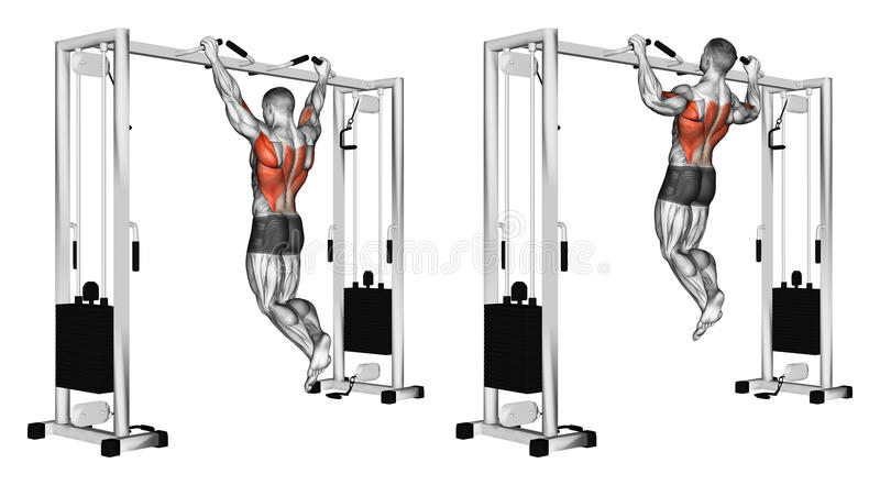 Exercising. Pulling up wide grip hand on the crossbar undergrip royalty free illustration