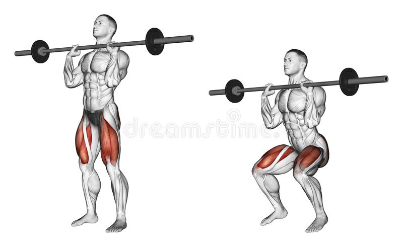 Exercising. Squats on his chest royalty free illustration